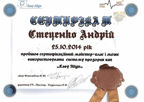 stecenko2018010