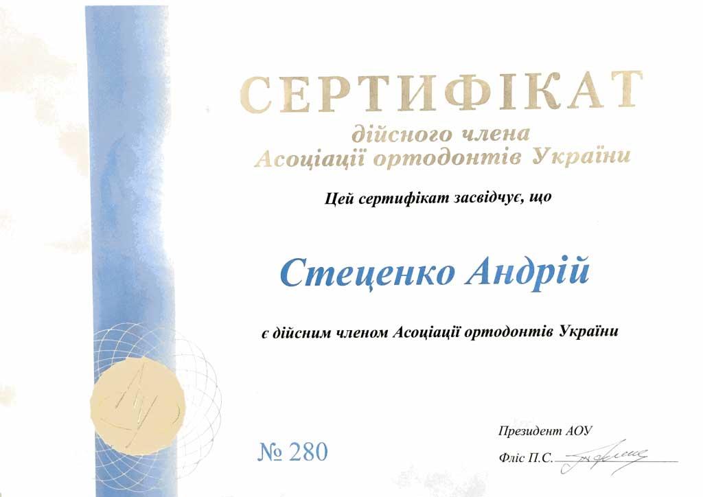 stecenko2018011